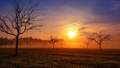 Foggy morning (jochen.bogomiehl) Tags: morning sunrise munich mnchen bavaria colorful nebel foggy samsung galaxy sonnenaufgang s4 morgenstimmung