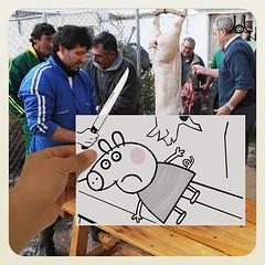 Peppa (JL) Tags: people pig hand gente manos slaughter pigs mano peppapig peppa cerda cerdo cerdos matanza