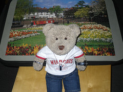 I'm goin' away fer a few days! (pefkosmad) Tags: bear ted buildings garden toy stuffed soft teddy fluffy hobby puzzle softie photograph leisure jigsaw narrowboat warwickshire stratforduponavon pastime flowerbeds tedricstudmuffin