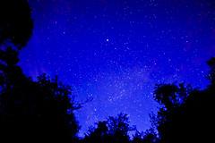 milky way (prem swaroop) Tags: trees bluesky astrophotography milkyway starsnightphotography palapuntha