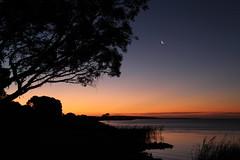 Lake Albert sunsets. Meningie #3 (robynbrody) Tags: sunset sky moon lake water evening dusk albert australia southaustralia coorong