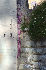 Purple Squiggle (Occasionally Focused) Tags: brick wall graffiti purple pentax takumar manualfocus sunny16 manuallens manualexposure unmetered rawtherapee justpentax takumarbayonet notevenchimped takumarbayonet135mm125 singleinapril2016