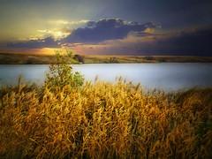 Good morning (mrbillt6) Tags: morning sky lake water grass rural sunrise landscape pond outdoor northdakota serene prairie plains