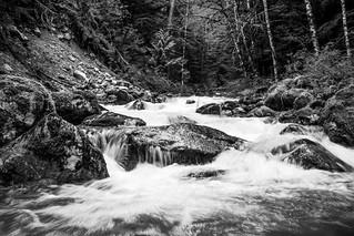 North Cascades - Creek