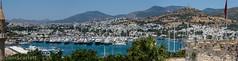 DSC_1084-Pano.jpg (cptscarlett78) Tags: nikon scarlett sea nikon castle tom panorama turkey harbour aegean kalesi d7100 d7100 bodrum bodrum