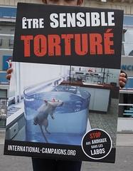 Happening anti vivisection - Nantes - 23/04/2016 (La plante d'abord) Tags: animaux nantes happening manifestation dissection vivisection laboratoire antivivisection droitsdesanimaux internationalcampaigns