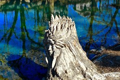 Deep in thought (malcolmharris64) Tags: blue sky sculpture reflection water creek stream texas country hill carving springs rivers cypress streams wimberley