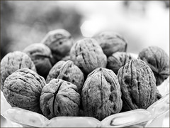 006 20160429 D200-Rokkor18-55.tif (georgios a.v.) Tags: nikon minolta walnuts d200 noix rokkor nikond200 mflenses minoltarokkorpf1855