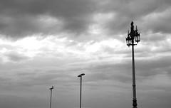 Composizione Urbana #2 (Marco Vitale_) Tags: city winter england urban white black clouds composition cityscape citylights series rithm
