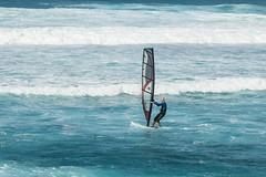 Maui February 2016-41 (Photobug915) Tags: hawaii maui windsurfers beachscene hookipabeach