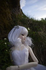 wooden anemones wonderland (Nattmaran) Tags: ball wooden doll little monica bjd anemones sophia jointed