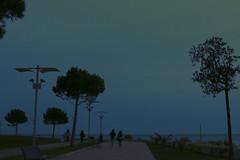 un filo di luce (Steph ) Tags: blue light sky parco love colors alone loneliness colore blu walk passengers ami cielo urbano albero amici azzurro colori amicizia amore passeggiata amare