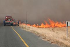 1T3V6548 (francois f swanepoel) Tags: fire firefighting westerncape tulbagh veldbrand brandblus