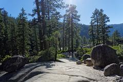 Park Narodowy Yosemite | Yosemite National Park