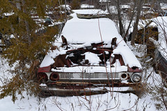 DSC_0797 v2 (collations) Tags: ontario abandoned autos derelict automobiles rockwood junkyards wreckers autowreckers autograveyards mcleansautowreckers carcemeteries