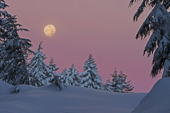 IMG_9048 (Debbie DS) Tags: snow oregon sunrise beautifullight mthood sledding snowshoeing moonset whiterivercanyon ghostridge tricountyridge