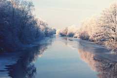 Givr (Maxi Winter) Tags: schnee trees winter snow cold ice river frost hiver sunny frosty arbres neige bremen icy fluss kalt eis sonnig bume gel froid glace wmme fleuve frostig glac blockland ensoleill givr
