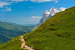 Climb every Mountain, the Eiger Trail,Canton of Bern, Switzerland. The Wetterhorn and the Grosse Scheidegg. Alpinglen , Grindelwald. No. 8087. (Izakigur) Tags: friends alps topf25 alpes liberty europa suiza swiss patrice first grindelwald helvetia alpi berne topf200 thelittleprince berna dieschweiz berneroberland sussa wetterhorn grossescheidegg lasuisse d700 eigertrail nikond700 nikkor2470f28 thejungfrauregion suisia laventuresuisse