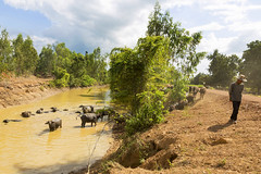 SukhoThai_6346 (JCS75) Tags: canon thailand asia asie sukhothai thailande