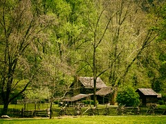 Old farm buildings at Great Smoky Mountains National Park, TN, USA (The Shared Experience) Tags: wild usa green nature landscape outdoors spring tn lanscape d800 2014 greatsmokymountainsnationalpark gsmnp niksoftware