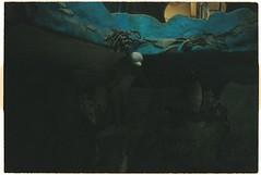 (tayn3) Tags: abandoned film analog 35mm dark hotel kodak dolphin olympus eerie vietnam spooky 400 analogue tet dalat olympustrip35 themepark lunarnewyear darkly crazyhouse trip35 2016 ultramax chucmungnammoi ultramax400 croplab
