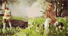 Dandelions. (BijankRau | [ photograp'r model.]) Tags: flowers sexy fashion hair spring model break photographer natural blondes blowing fair blogger lg dandelion clothes sl event blogging poses makeawish virtuallife nomatch terradesign dollarbie lageeny