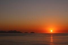 Nascer do sol na Praia de Copacabana - Sunrise at Copacabana Beach (adelaidephotos) Tags: brazil seagulls praia beach rio brasil riodejaneiro sunrise dawn gaivotas copacabana amanhecer nascerdosol praiadecopacabana copacabanabeach mariaadelaidesilva