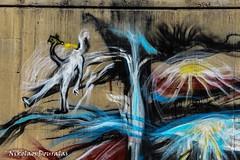 D7200 Day One (Nikolaos Douralas) Tags: street color colour digital nikon streetphotography dslr streetgraffiti perama nikon1855mmvr d7200 digitalfilmrevolutionwordpresscom