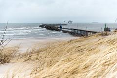 Wind (MadCyborg) Tags: grass strand sand nikon latvia gras mole ventspils breakwater lettland wellenbrecher d600