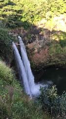 IMG_1608 (TruffShuff) Tags: 2016 hi hawaii kauai wailuariverstatepark february2016
