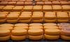 Cheese (Jan Herremans) Tags: cheese circles nederland alkmaar 2010 woophy janherremans