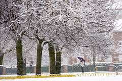 _APB2663 (2) (plazaberribaranain) Tags: nikon nieve baraain invierno agustin navarre elurra navarra nafarroa negua d7200 agustinpea nikond7200 plazaberri plazaberriinfo