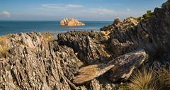 Rocky Cape (laurie.g.w) Tags: ocean water coast rocks shoreline rocky australia tasmania cape coastline sescape