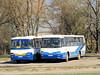 Autosan H9-21, PKS w Płocku S.A. (transport131) Tags: bus autobus pks h9 płock autosan h921