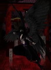 Darkness Tengu (Light_Aoshimori) Tags: red mist graveyard japan fog dark wings gate darkness tombstone kanji sakura tori shinto japaneseculture hiragana shintoism torigate yokai
