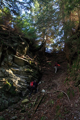L'Uscita (Roveclimb) Tags: wood wild mountain alps nature forest ticino hiking path natura trail svizzera sentiero alpi montagna bosco eir biasca escursionismo malvaglia selvaggio vallediblenio forete pontirone valpontirone pontid olpontid loderio solgone