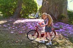 Milk on her way home🎵 (cute-little-dolls) Tags: trees bike garden toy miniature petals spring doll kawaii petworks ruruko rurukodoll