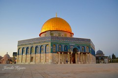 Prayer (Jamila Hajam) Tags: islam jerusalem religion alaqsa gebet moschee tempelberg muslime
