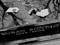 Sontag Grave (Broot - Thanks for a half million views!!) Tags: blackandwhite bw plant paris flower monochrome cemetery grave rose spring memorial thankyou mourning susan tomb offering april tribute montparnasse grief susansontag sontag