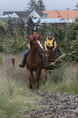 IMG_EOS 7D Mark II201604039675 (David F-I) Tags: horse equestrian horseback horseriding trailriding trailride ctr tehapua watrc wellingtonareatrailridingclub competitivetrailriding sporthorse equestriansport competitivetrailride april2016 tehapua2016 tehapuaapril2016 watrctehapuaapril2016