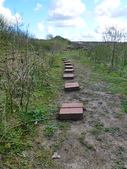 Steps to know where (VOLRANGER398) Tags: warrington bricks steppingstones gatewarth