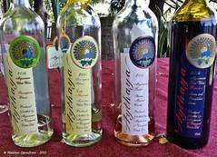 Aythaya - wine tasting (maccdc) Tags: festival fireworks balloon myanmar candlelit taunggyi bhurma