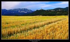 Morillo de Moncls (wuploteg1) Tags: muro castle la huesca valle valley aragon castillo aragones roda pyrenees pirineos sobrarbe pirineo morillo aragn aragons monclus altoaragon oscense fueva altoaragn moncls tierrantona