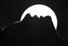 (Milvia Lapucci) Tags: light bw black mountains face lines contrast mouth hair neck noir shadows lips porttrait