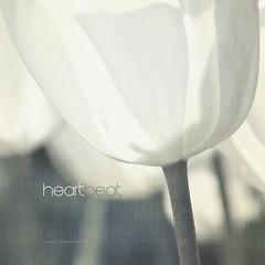 heartbeat (un battement du coeur) (patrice ouellet) Tags: art feelings heartbeat patricephotographiste battementducoeur