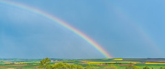 NEADA NKON0558sine LR5 (fbegemenfb) Tags: sky cloud plant grass landscape rainbow nikon d750 serene fullframe regenbogen gkkua trakya kanola nikond750 nikontrk tamkare