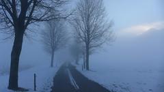 Bodennebel (Aah-Yeah) Tags: street mist fog bayern nebel strasse achental chiemgau grassau bodennebel