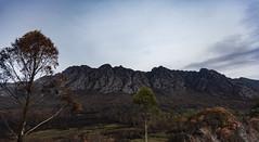 Sentinel Range, Southwest Tasmania (Steven Penton) Tags: park mountain southwest australia national tasmania range sentinel
