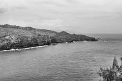 Maui West Shore (rschnaible) Tags: ocean bw white seascape black water landscape photography hawaii coast tour pacific outdoor sightseeing monotone maui tourist tropical tropic coastline