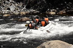 #Desi #Boys join a #crew and go #WhiteWaterRafting  #MooseRiver  #Adirondacks  #HighAdventure #thrilling #IG_NorthEast #IG_NorthAmerica  #IG_UnitedStates  #WhiteWater #rafting #LiveAuthentic #WeLiveToExplore #adventurers #travel #traveller #TravelGram  #N (faisal_halim) Tags: travel sports nature boys whitewater adirondacks rapids traveller artsy rafting crew desi extremesports watersports adrenaline whitewaterrafting newyorkers nikonphotos adventurers thrilling highadventure mooseriver natureporn adrenalinesports travelgram ignorthamerica liveauthentic igunitedstates welivetoexplore ignortheast